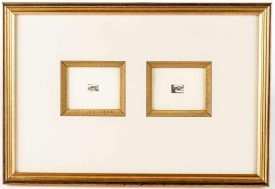 John Taylor Arms Miniature Etchings