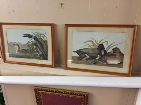 vintage pair of duck prints