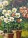 gardenpots3-min