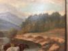 cows6-min