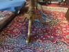 tiger maple furniture for sale